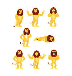 lion set poses and motion wild animal happy and vector image
