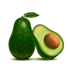 Realistic detailed 3d whole avocado and slice vector