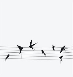 Silhouettes swallows sitting on wires black vector
