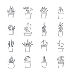 Succulent and cactus icons set outline style vector