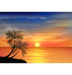 Sunset background on beach with palm tree vector