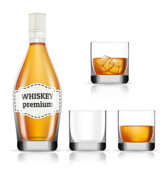 Whisky icons set realistic style vector