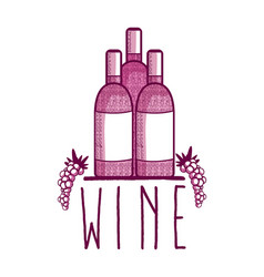 Wine bottles with grapes doodle vector