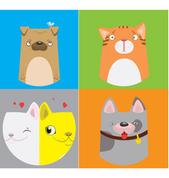 funny dogs and cats pattern vector image vector image