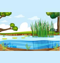 A nature swamp landscape vector