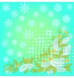 Flowers leaves feathers on blue and green vector image