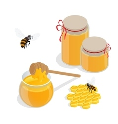 Glass jar full of honey and wooden honey dipper vector