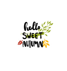 hello sweet autumn badge isolated design label vector image