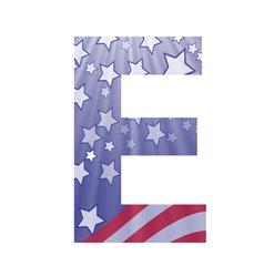 american letter E vector image vector image