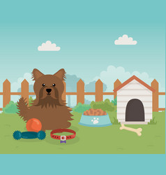 Brown dog with house food and toys pet care vector