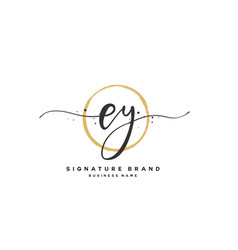 E y ey initial letter handwriting and signature vector