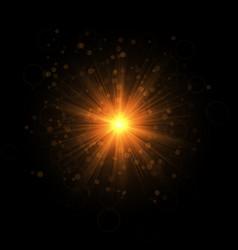 Golden blazing star vector