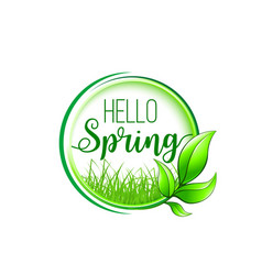 hello spring badge with green leaf frame and grass vector image