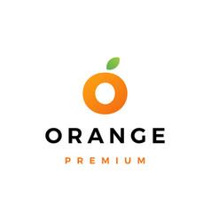 o letter orange fruit logo icon vector image