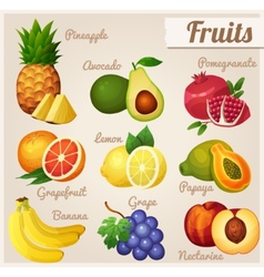 Set of food icons Fruits vector image
