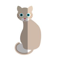 cat cute pet icon vector image