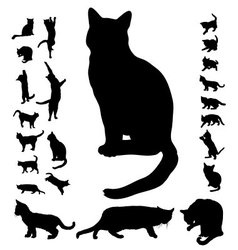 cat silhouette collection vector image