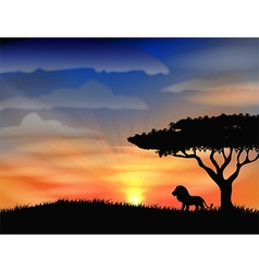Sunset background with animal lion vector