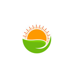 Care sun logo icon design vector