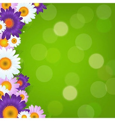 Colorful Gerbers Flowers Frame With Green Bokeh vector image