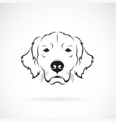 Dog head golden rretriever on a white background vector