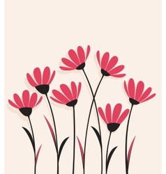 flowers with pink petals on a bright background vector image