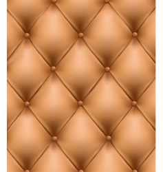 genuine leather vector image