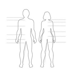 man and woman human body silhouettes vector image