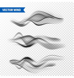 Realistic wind set on transparent background vector