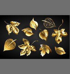 set golden leaves vector image