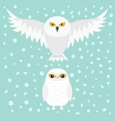 white snowy owl sitting flying bird with wings vector image