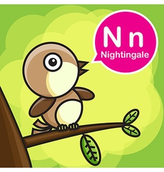 N Nightingale color cartoon and alphabet for vector image vector image
