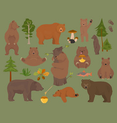 All bear species in one set bears in forest vector