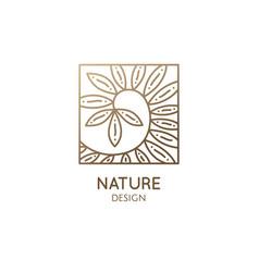 Costus afer spiral ginger linear logo ornamental vector