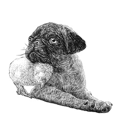 Dog and Chick 02 vector
