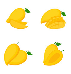 mango whole fruit slices vector image