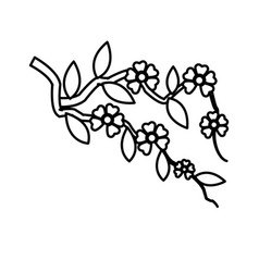 branch sakura with flowers cherry blossom line vector image vector image