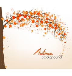 Autumn abstract background with colorful leaves vector