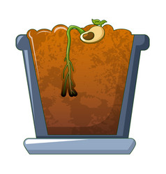 bean in ground germinated icon cartoon style vector image