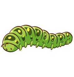 Caterpillar cartoon on white background vector