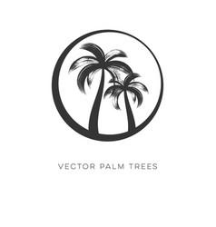 creative palm trees logo design template vector image