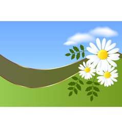 Daisy and clouds vector