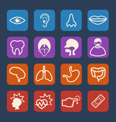 medical and hospital icons set flat design set vector image