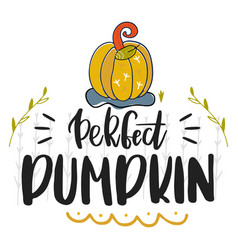 perfect pumpkin hand drawn vector image
