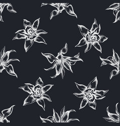 seamless pattern with hand drawn chalk guzmania vector image