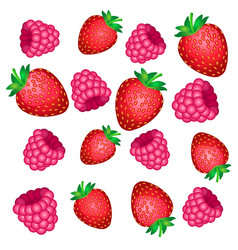 the falling of the red berries of strawberry and vector image