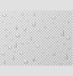 water drops isolated rain drop splashes droplets vector image