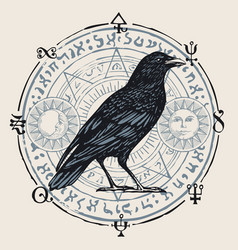 Banner with hand-drawn raven and sorcery symbols vector