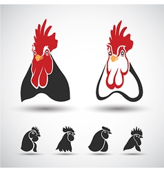 Chicken head vector