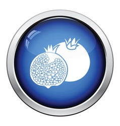 Icon of Pomegranate vector
